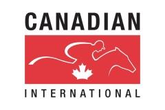 Major Stakes Racing Logo