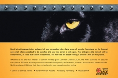 panther_ad1