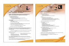 IVR - Vertical Market Solutions, Credit collections flyer